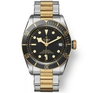 Tudor Black Bay 41 S&G